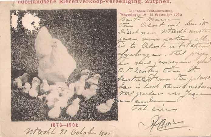 zutphen 1901 wersch