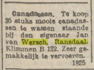 1923: Canadassen zijn populieren.